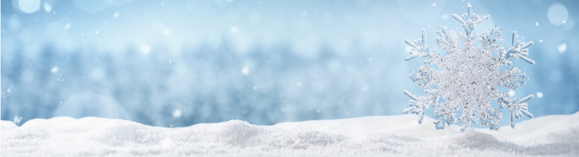 Winter background with large snow flake