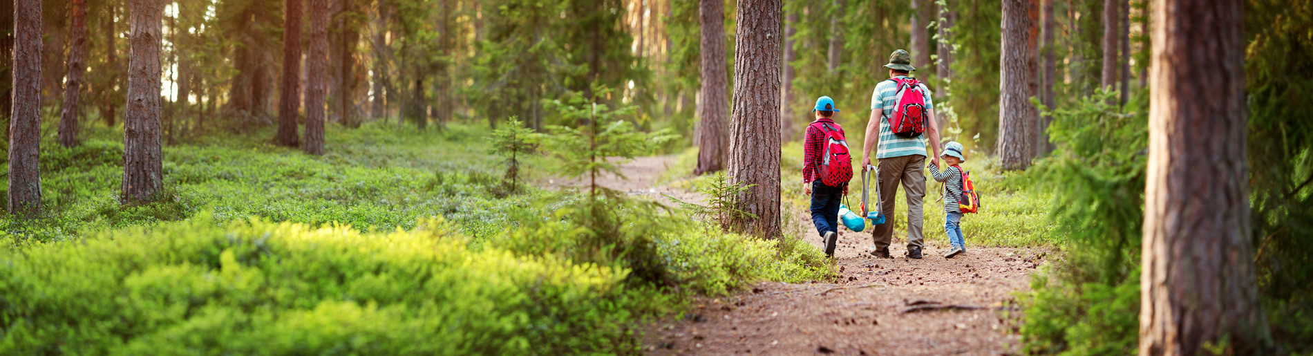 Man with sons with backpacks walking in the forest